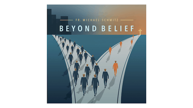 Beyond Belief: Following Christ Today by Fr. Mike Schmitz