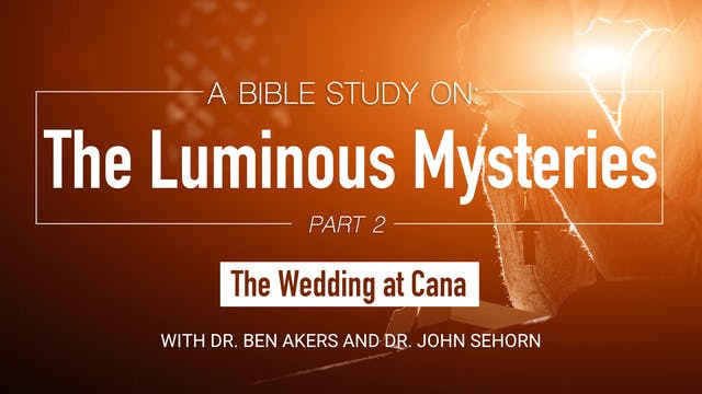 A Bible Study on the Luminous Mysteri...