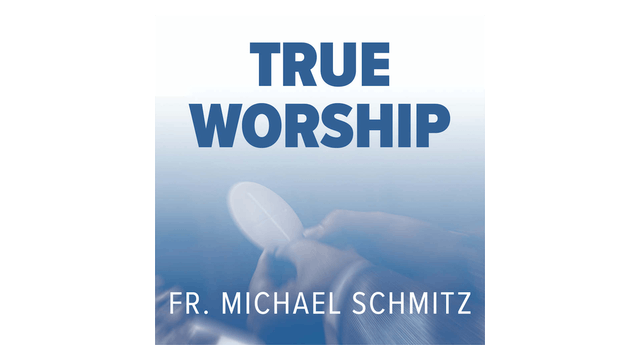True Worship by Fr. Mike Schmitz