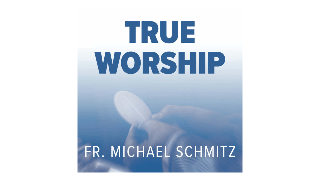 True Worship by Fr. Mike Schmitz