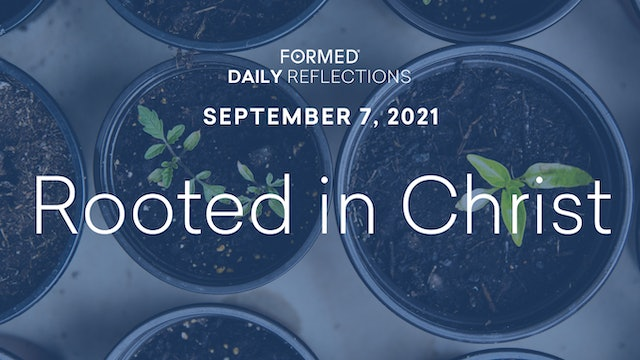 Daily Reflections – September 7, 2021