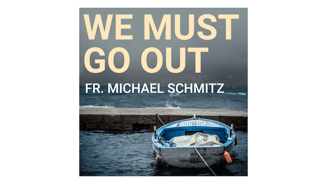 We Must Go Out: The Sacrament of Confirmation by Fr. Mike Schmitz