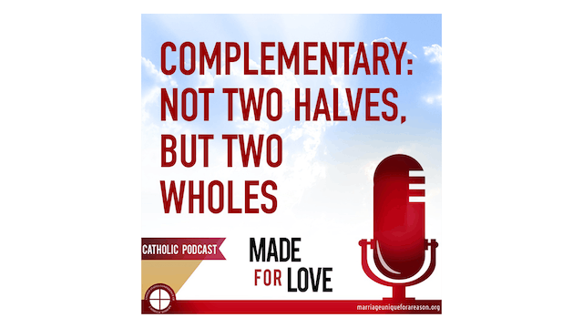 Complementarity: Not Two Halves but Two Wholes