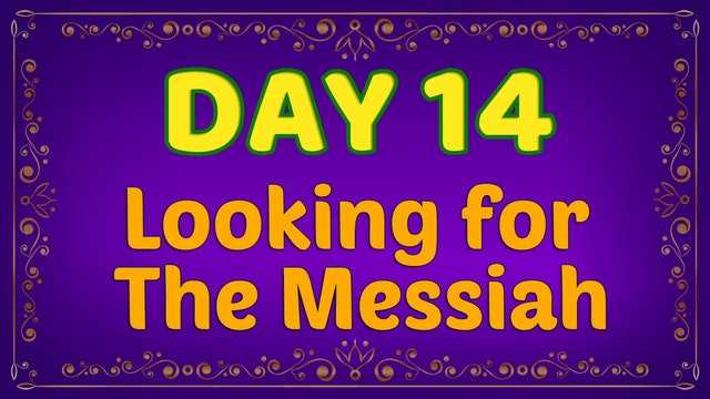 Day 14 - Looking for the Messiah
