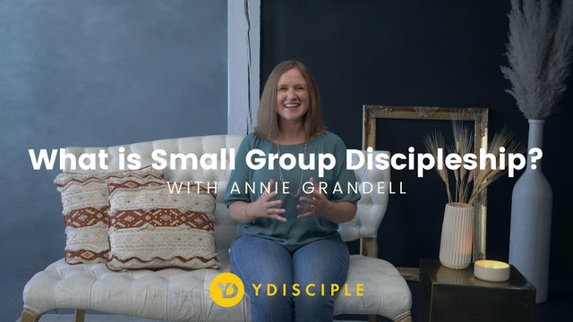 What is Small Group Discipleship