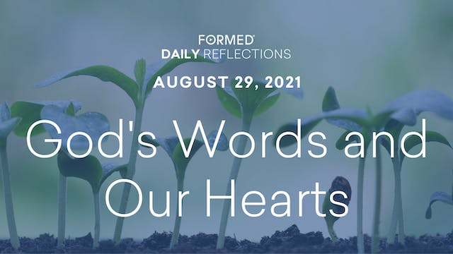Daily Reflections – August 29, 2021