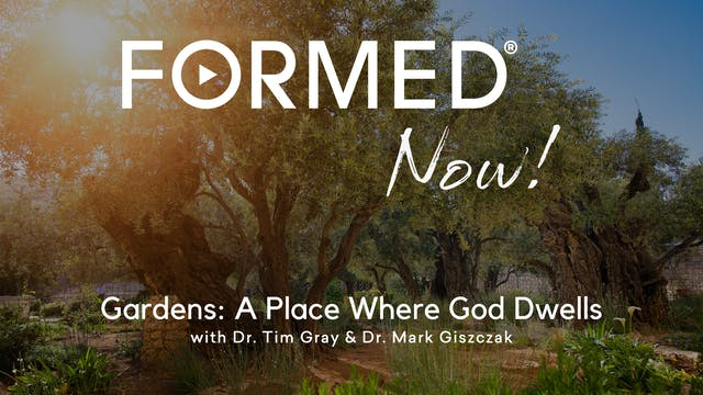 FORMED Now! Gardens: A Place Where Go...