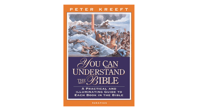 KINDLE: You Can Understand The Bible
