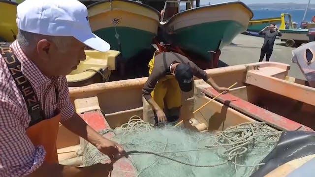 San Pedro: Pescador de Hombres