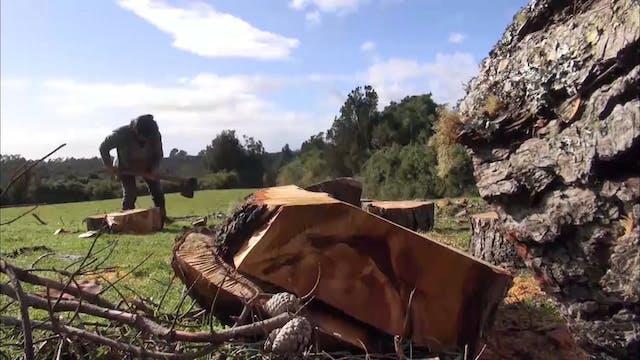 Cahuach: La Isla de la Devoción