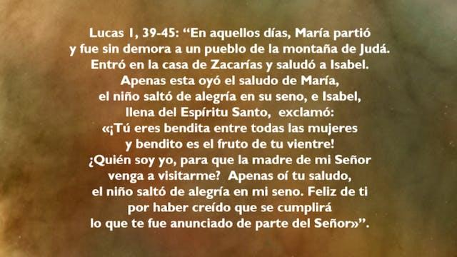 María en la Historia de la Salvación ...