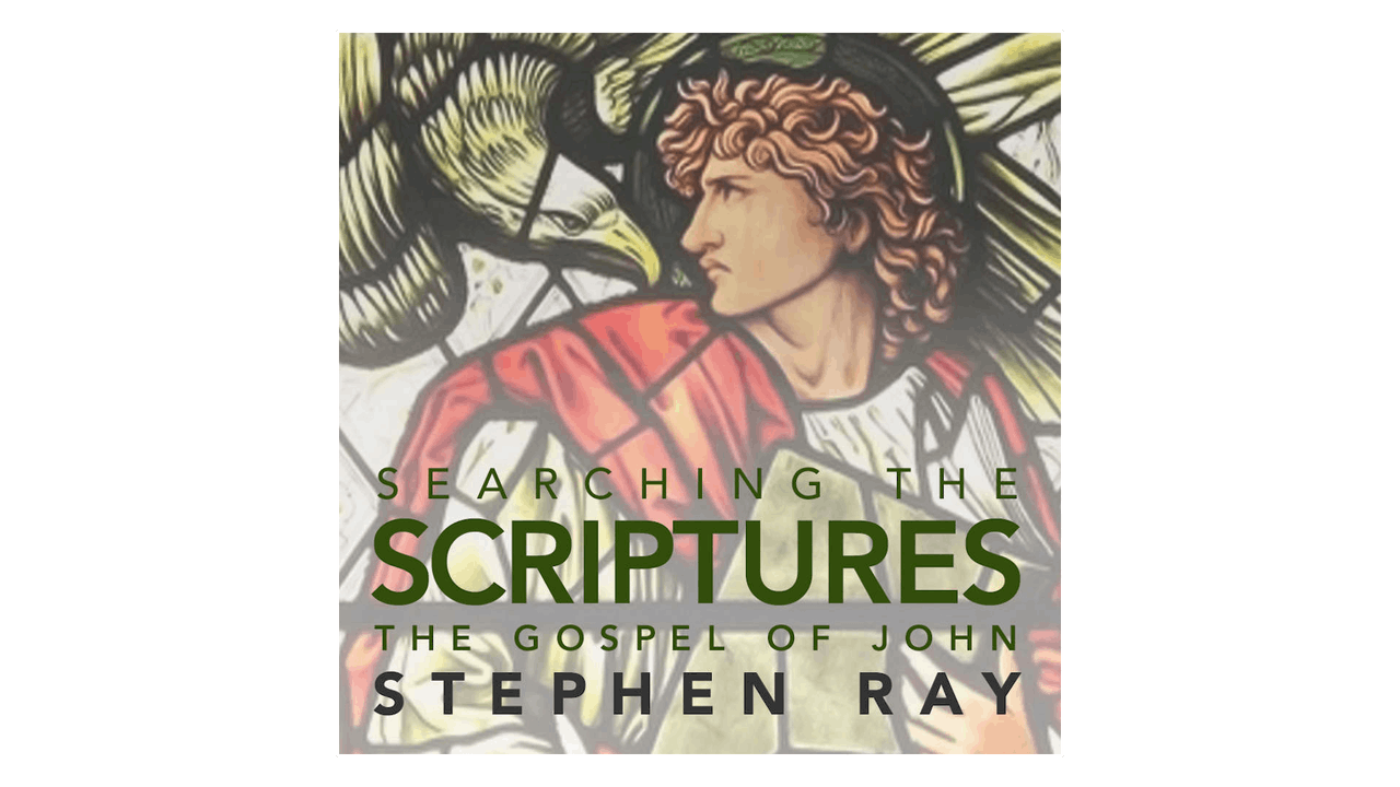 Searching the Scriptures: The Gospel of John by Stephen Ray