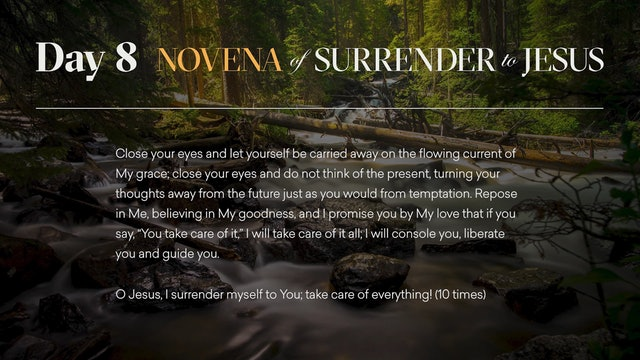 Day 8 - Novena of Surrender to Jesus