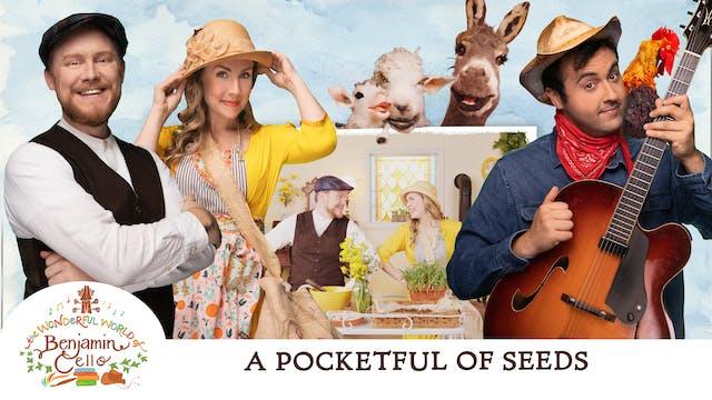 Episode 5 - A Pocketful of Seeds