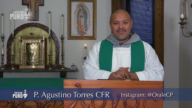 Quinto Domingo de Tiempo Ordinario—Fe...