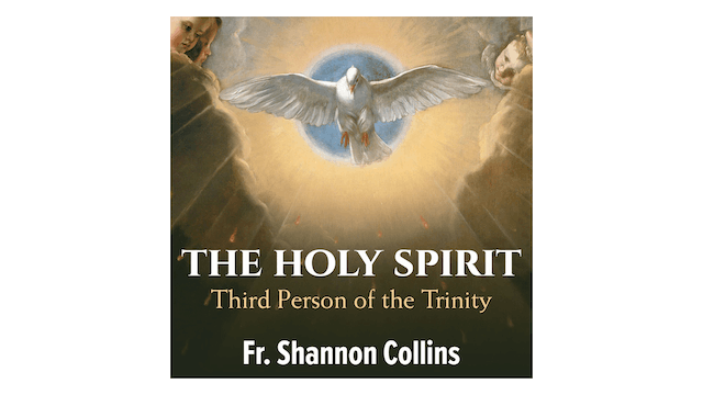 The Holy Spirit: Third Person of the Trinity by Fr. Shannon Collins