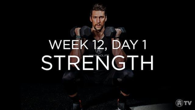 WEEK 12 | DAY 1: STRENGTH