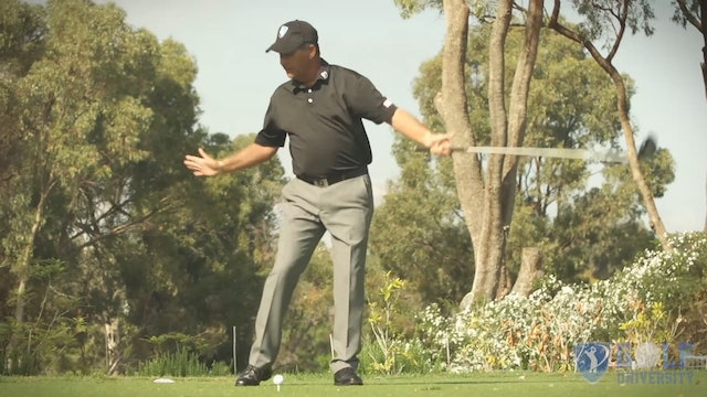 How To Hit A Low Runner With Your Driver