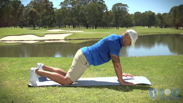 The Plank Exercise with Rotation Options for Core Muscles