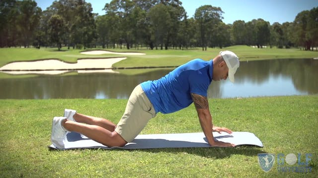 The Plank Exercise with Rotation Opti...