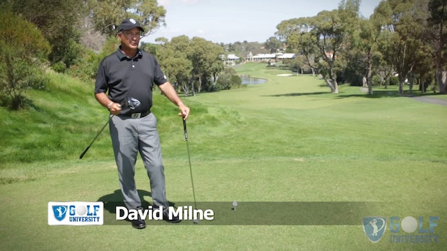 How To Overcome Age And Physical Restrictions With Your Driver