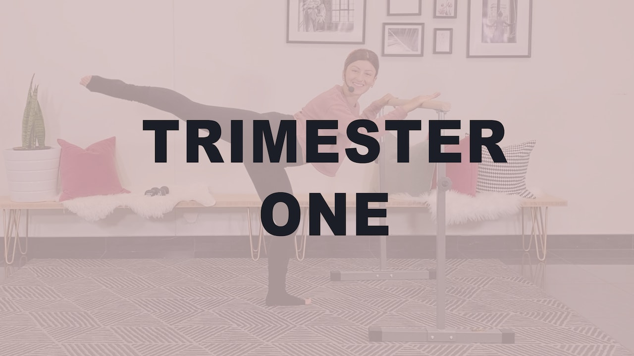 Trimester One