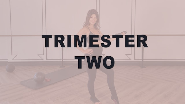 Trimester Two