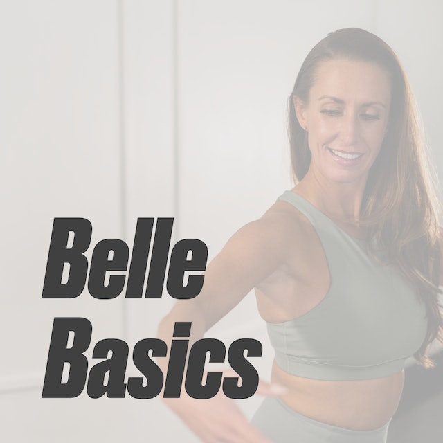 How to Get Started   Belle Basics