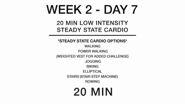 Week 2 - Day 7 (cardio)