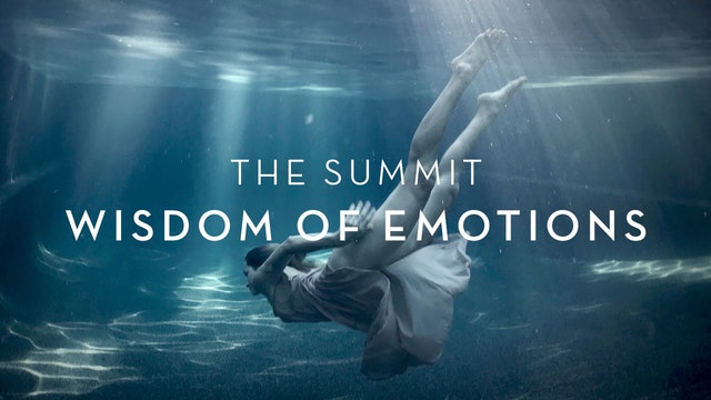 The Summit : Wisdom of Emotions : ON DEMAND