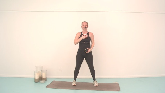 The Class Prenatal Focus with Emily l 40 minutes