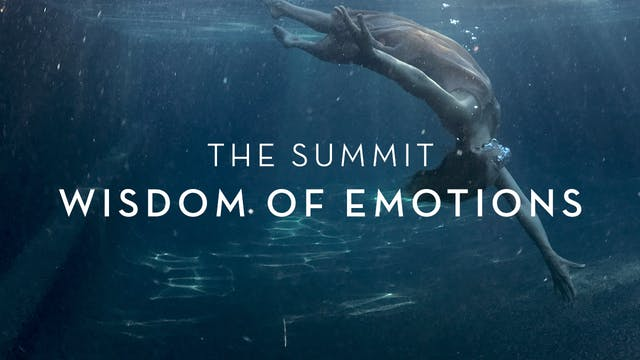 The Summit : Wisdom of Emotions : Launch Weekend