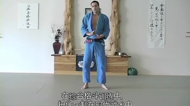 Blue Belt: Throws and Takedowns | Chinese