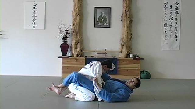 Blue Belt: BJJ Guidelines