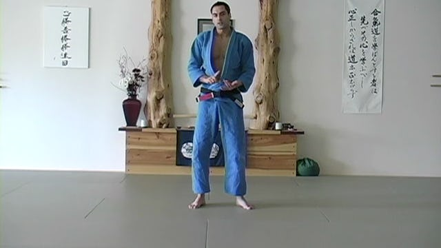 Blue Belt: Throws