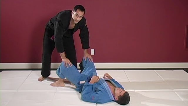 Purple Belt: Passing Techniques