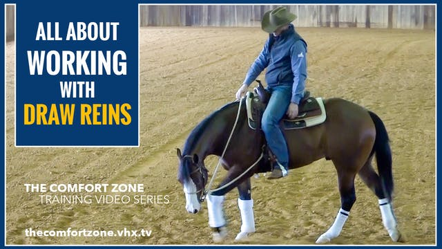 Working With Draw Reins