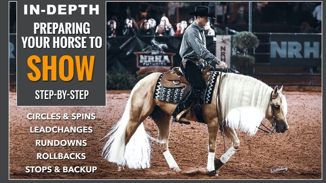 Preparing Your Horse To Show
