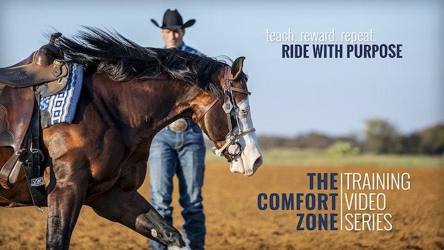 THE COMFORT ZONE - Horse Training Video Series