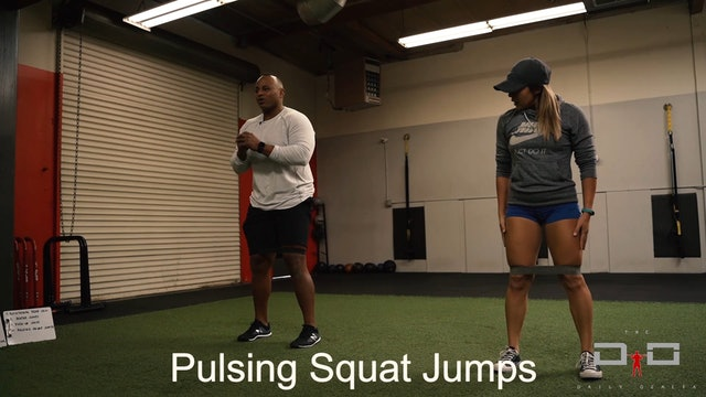 Individual Workout 14 - Pulsing Squat Jack