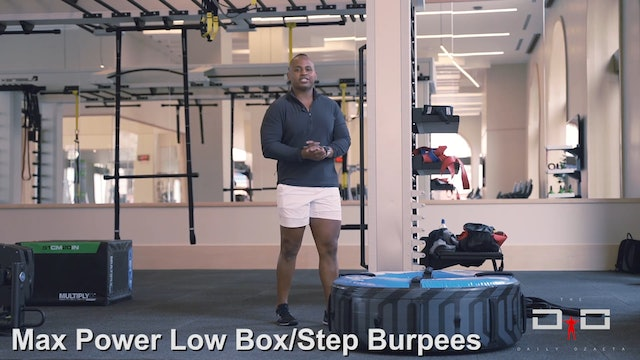 Individual Workout 94 - Max Power Low Bo xSquats + Step Burpees