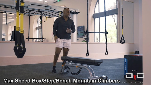 Individual Workout 95 - Max Speed Box Step + Bench Mountain Climbers