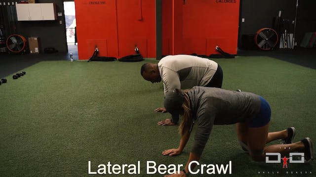 Individual Workout 9 - Lateral Bear C...
