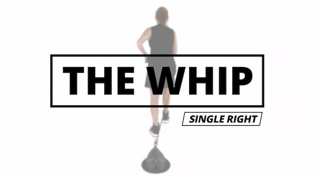 THE WHIP - Single Right