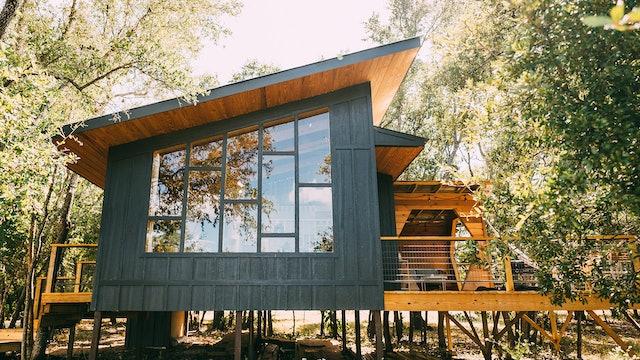 Tree House Time Turner