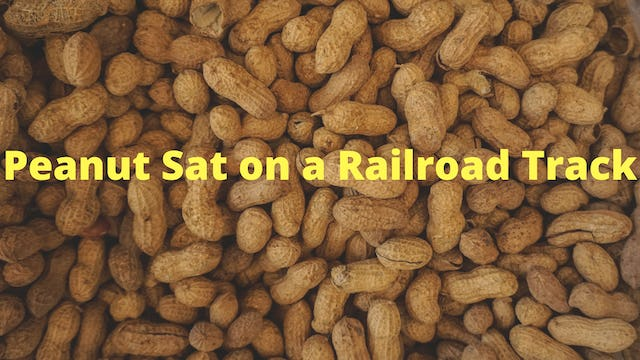 Peanut-Sat-On-A-Railroad-Track