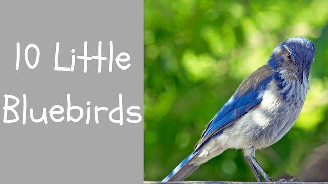 TenLittleBluebirds