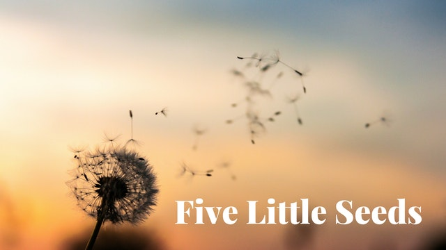 Five-Little-Seeds