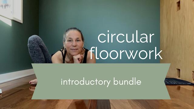Circular FloorWork Introductory Bundle ⭐️