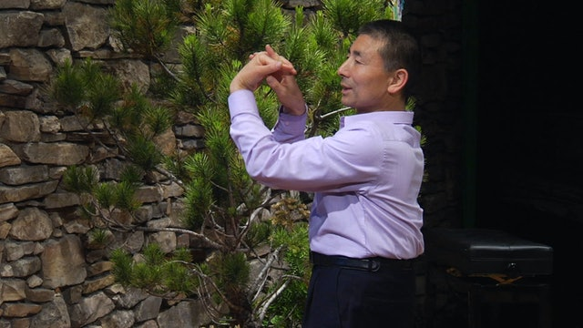 Medical Qigong w/ Dr. Philip Yang - Lesson 1 pt. 2